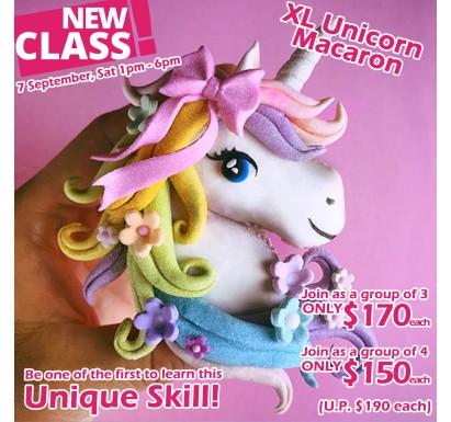 XL Unicorn Macaron Class
